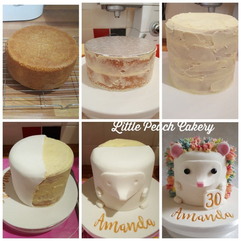 Magnificent Large Hedgehog Cake Little Peach Cakery Funny Birthday Cards Online Inifodamsfinfo